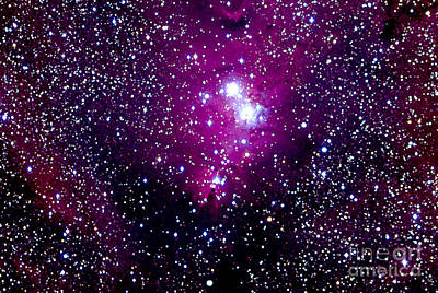 Christmas Tree Cluster And Cone Nebula Poster by John Chumack