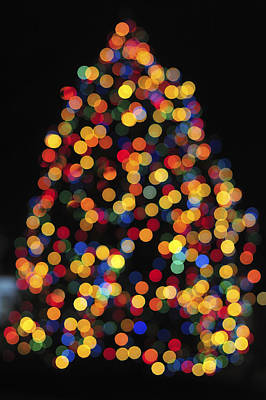 Christmas Tree Lights Poster by Terry DeLuco