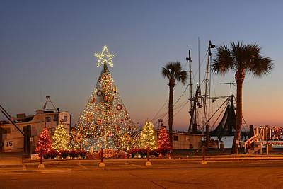 Christmas Tree On Gulf Coast Poster by Christian Heeb