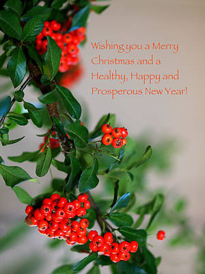 Poster featuring the photograph Christmas Wishes by Annette Hugen