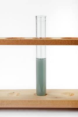 Chrome Alum In Alkaline Solution Poster