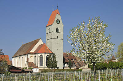 Church And Blooming Apple Tree Poster by Matthias Hauser