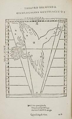 Cisne Star Constellation Poster by British Library