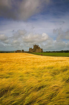 Cistercian Dunbrody Abbey 1182 Poster by Panoramic Images
