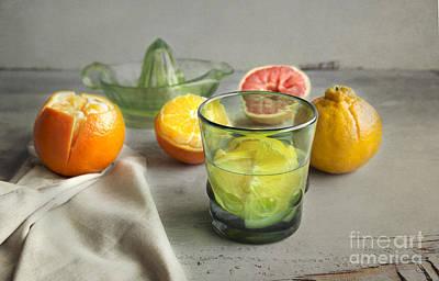 Citrus Fresh Poster by Elena Nosyreva