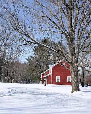 Classic Vermont Red House In Winter Poster