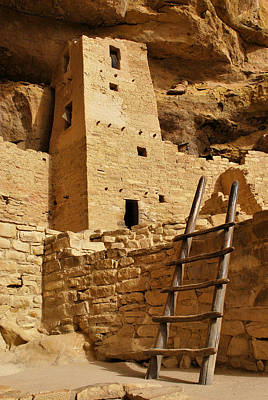 Cliff Palace Tower At Mesa Verde Nhs Poster by Gregory Ballos