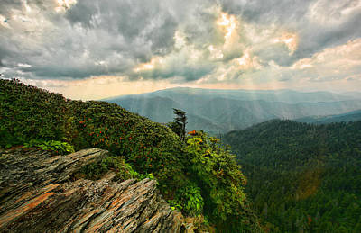 Cliff Tops At Mt. Leconte Gsmnp Poster