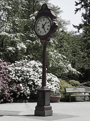 Poster featuring the photograph Clock In Park Muted by Laurie Tsemak