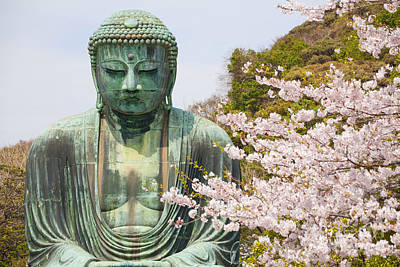 Close Up Great Buddha With Sakura Foreground In Kotoku-in Temple Poster