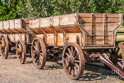Close-up Of Grain Wagons Poster
