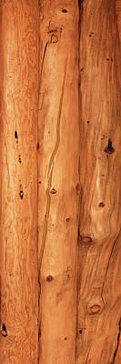 Close-up Of Log House, Oregon, Usa Poster