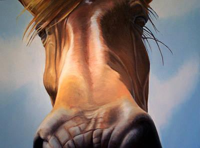 Close Up Poster by Steve Messenger