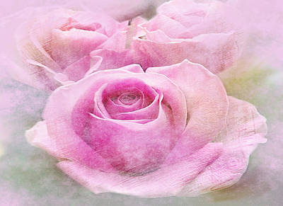 Clouded Pink Roses Poster by Dennis Buckman