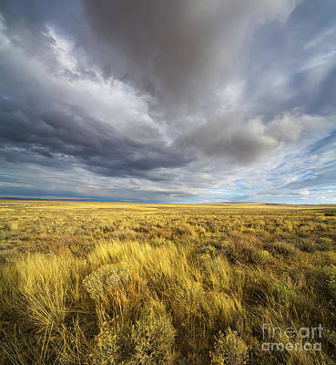 Clouds And Prairie Hart Mt N R Poster