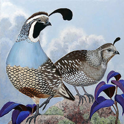 Cloudy California Quail Poster by Ande Hall