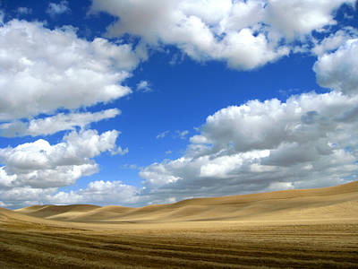 Cloudy Skies Of Palouse Poster by Anne Mott