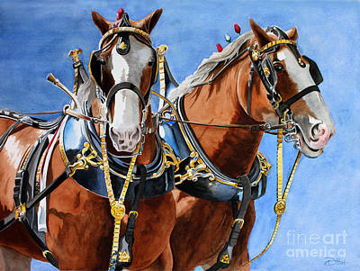 Poster featuring the painting Clydesdale Duo by Debbie Hart
