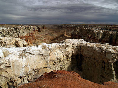 Poster featuring the photograph Coal Mine Mesa 08 by Jeff Brunton