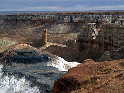 Poster featuring the photograph Coal Mine Mesa 09 by Jeff Brunton