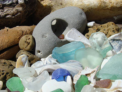 Coastal Beach Art Prints Blue Seaglass Fossils Shells Poster