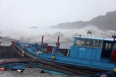 Coastal Storm Surge During Typhoon Usagi Poster