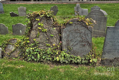 Cobbs Hill Burial Ground Poster by Deborah Smolinske