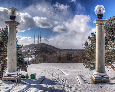 Cobbs Hill Park In Winter Poster by Tim Buisman