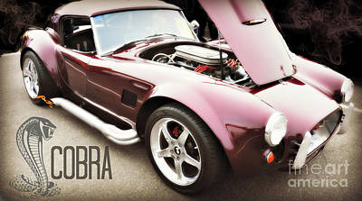 Cobra Car Poster by Mindy Bench