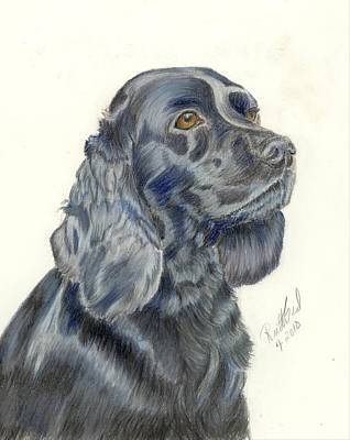 Cocker Spaniel Poster by Ruth Seal