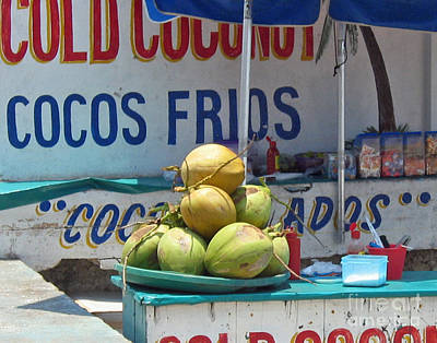 Poster featuring the photograph Coconuts - Mazatlan by Cheryl Del Toro