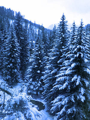 Cold In Colorado Poster