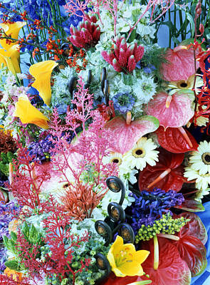 Collage Of Multi Colored Flowers Poster by Panoramic Images