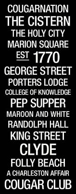 College Of Charleston College Town Wall Art Poster