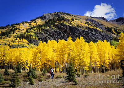Colorado Autumn Hike Poster by Janice Rae Pariza