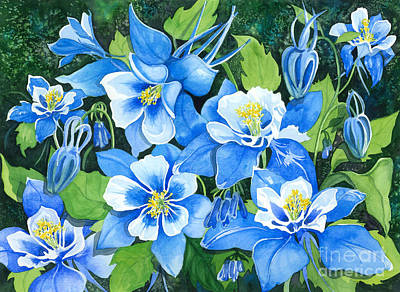 Colorado Columbines Poster by Barbara Jewell