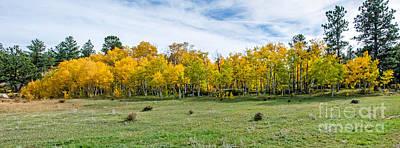 Colorado Fall Panorama Poster