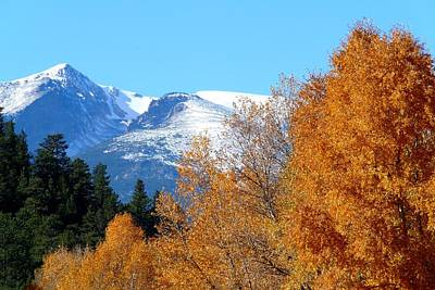 Colorado Mountains In Autumn Poster by Marilyn Burton