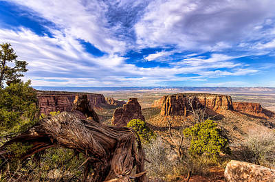 Colorado National Monument View Poster by John McArthur