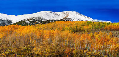 Colorado Rocky Mountain Independence Pass Autumn Pano 2 Poster