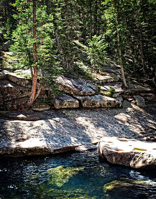 Colorado Rocky Mountain River Woodland Pine Forest Poster