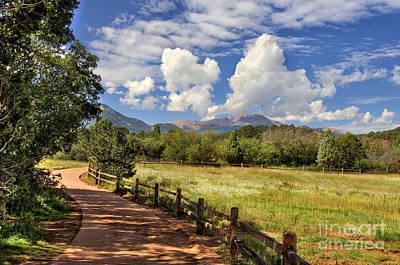 Colorado Scenic Pathway Poster by Cheryl Davis