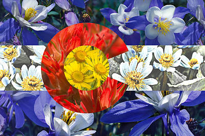 Colorado State Flag With Wildflower Textures Poster