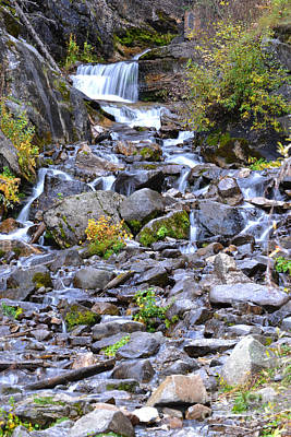Colorado Waterfall Mountain Stream Poster by Andrea Hazel Ihlefeld