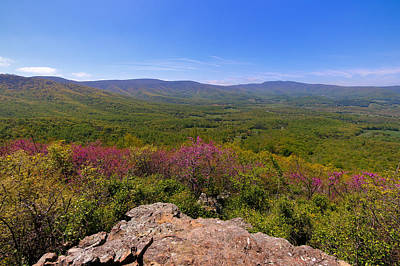 Colorful Blue Ridge Spring Poster