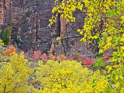 Colorful Canyon Wall In Zion National Park-utah  Poster