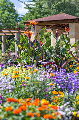Colorful Flowerbed Poster