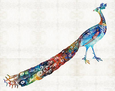 Colorful Peacock Art By Sharon Cummings Poster