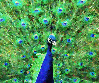 Colorful Peacock Expressionism Poster