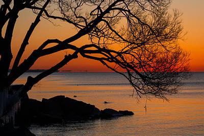 Colorful Quiet Sunrise On Lake Ontario In Toronto Poster by Georgia Mizuleva